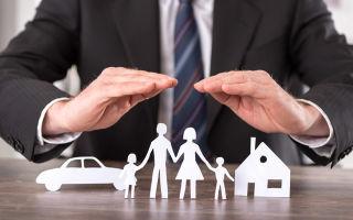 Страхователь — кто это, его ответственность, права и обязанности