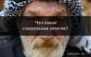 Социальная пенсия — ее виды, условия назначения, лица имеющие на нее право