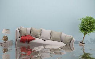 Затопили соседи сверху — что делать, куда обращаться, как возместить ущерб?
