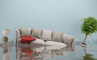 Затопили соседи сверху: что делать, куда обращаться, как возместить ущерб