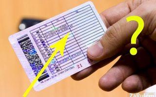 Категории водительского удостоверения «в» и «в1»: что значат, чем отличаются, на чем можно ездить?