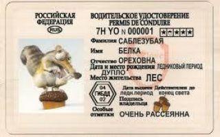 Иностранное водительское удостоверение в россии — можно ли ездить по иностранным правам