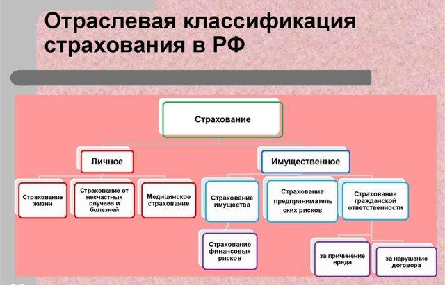 Страховая организация - ее особенности и виды, задачи и функции