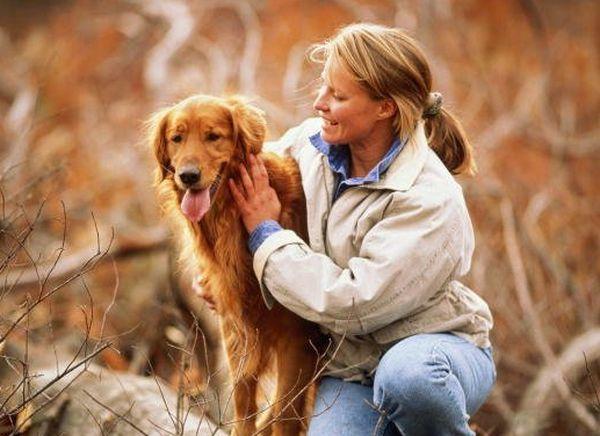 Страхование домашних животных - кошек, собак и других