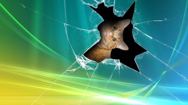 Прямой ущерб в страховании (direct damage) - что это, признаки, особенности