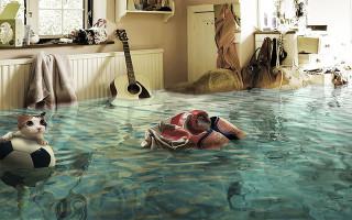 Затопили соседей снизу: что делать и как не платить