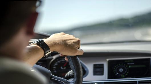 Проверка лицензии автошколы: список автошкол, прошедших лицензирование в 2020 году