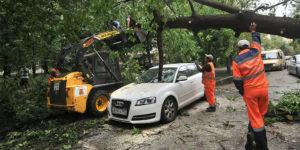 Упало дерево на машину: что делать, куда обращаться, кто виноват, судебная практика