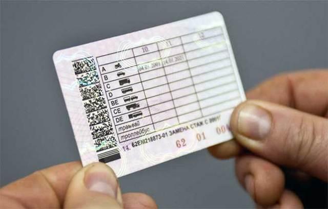 Серия и номер водительских прав: как узнать и где посмотреть, как узнать по фамилии и по паспорту онлайн