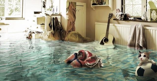 Страхование от наводнений (потопов), пожаров и стихийных бедствий