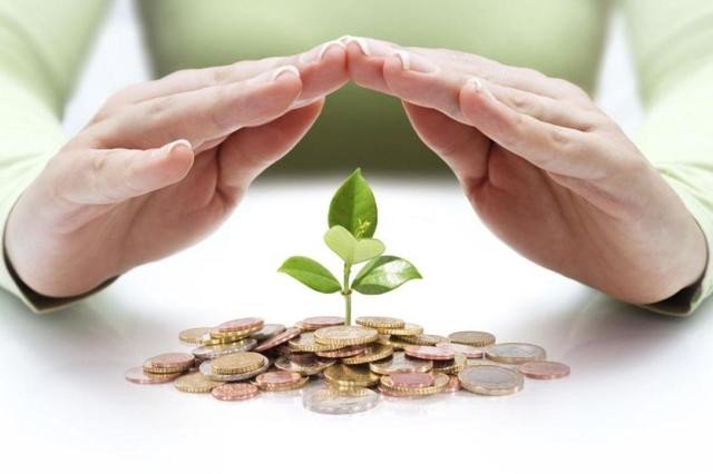 Банковское страхование для юридических лиц - что это, покрываемые риски, субъекты и объекты