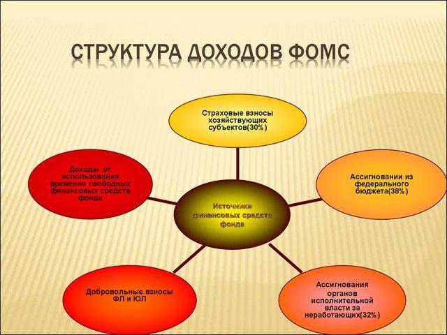Территориальный фонд ОМС: его функции, задачи, организация работы