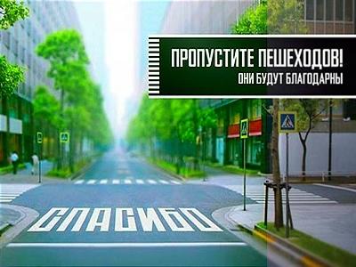 ДТП с участием пешехода: порядок действий водителя и пешехода