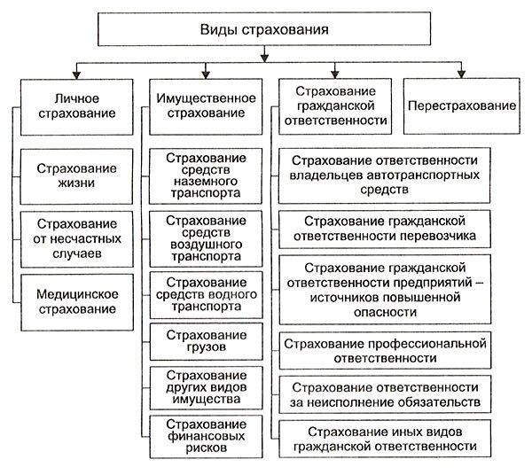 Страховая группа - что это, виды, особенности деятельности