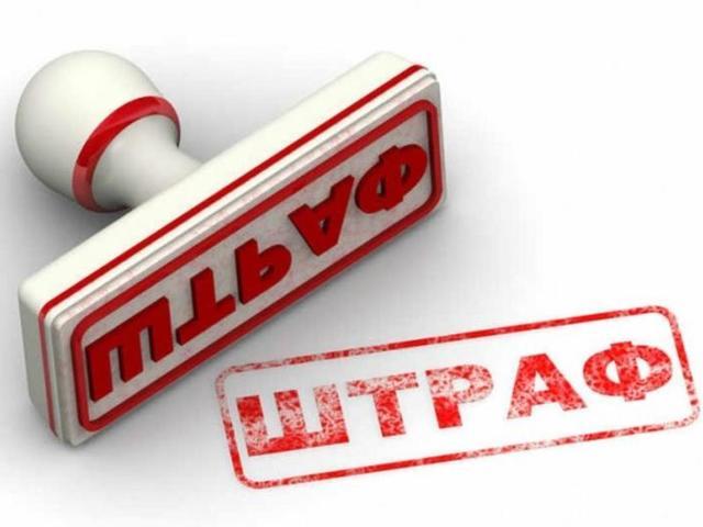 Проверка подлинности водительских прав: по базе ГИБДД, по фамилии, визуально