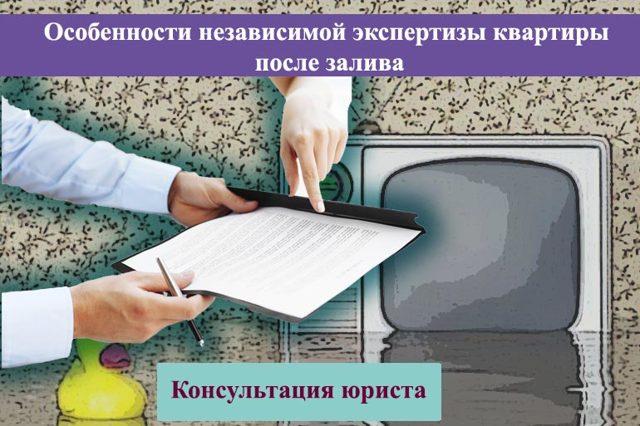 Независимая оценка и экспертиза при заливе квартиры: особенности, стоимость