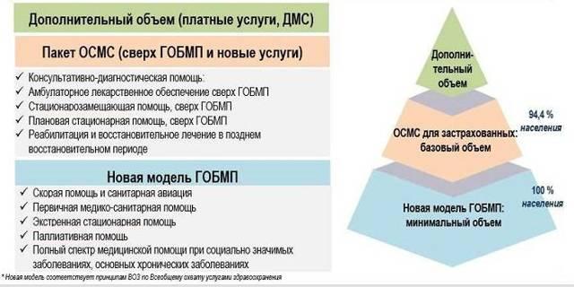 Полис ОМС в 2020: кому и для чего нужен, какие услуги в него входят, что он гарантирует