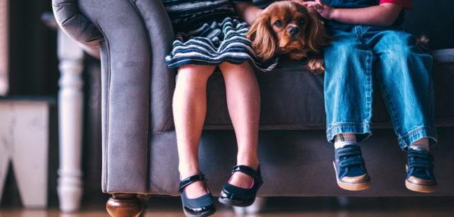 Выделение долей детям после погашения ипотеки материнским капиталом: порядок и сроки