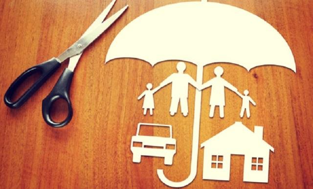 Страховой представитель (insurance representative): кто это, что значит, права, обязанности, уровни