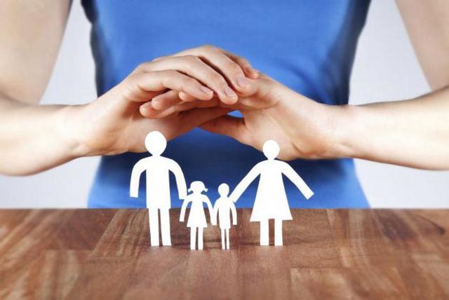 Страховой полис - что это, его назначение, реквизиты, формы и виды полисов