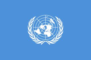 ПРФ и международные организации - сотрудничества и его цели